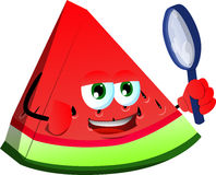 Detective slice of watermelon Royalty Free Stock Images