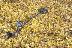 Detector de metais nas folhas amarelas na floresta do outono imagem de stock royalty free