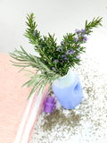 Detergent bottle with lavender Royalty Free Stock Photography