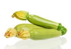 Determinada espécie de abóbora vegetal Imagem de Stock