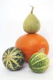 Determinada espécie de abóbora vegetal do detalhe Imagens de Stock Royalty Free