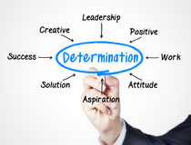 Determination. Concept sketched on screen royalty free stock images