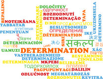 Determination multilanguage wordcloud background concept Royalty Free Stock Photo