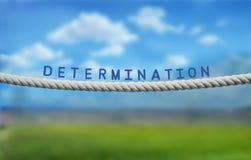 determinazione Fotografia Stock