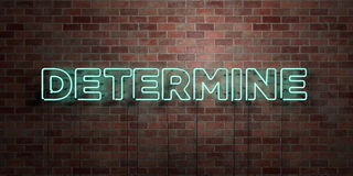 DETERMINE - fluorescent Neon tube Sign on brickwork - Front view - 3D rendered royalty free stock picture Royalty Free Stock Photo