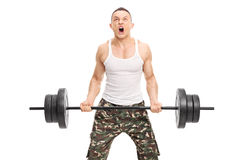 Determined bodybuilder lifting a heavy weight. Young determined bodybuilder lifting a heavy weight and shouting isolated on white background stock photos