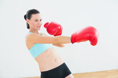 Determined boxer practicing in fitness studio Royalty Free Stock Photography