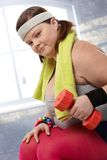 Determined fat woman with dumbbells Royalty Free Stock Image