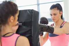 Determined female boxer focused on her training Royalty Free Stock Photos