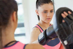 Determined female boxer focused on her training Royalty Free Stock Photography