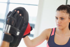 Determined female boxer focused on her training Royalty Free Stock Images