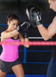 Determined female boxer practicing Royalty Free Stock Image