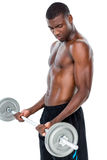 Determined fit shirtless man lifting barbell Royalty Free Stock Photography
