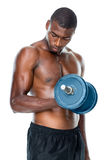 Determined fit shirtless young man lifting dumbbell Stock Photo
