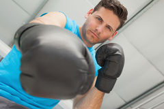 Determined male boxer focused on training Royalty Free Stock Images