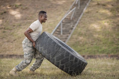 Determined military soldiers exercising with tyre. In boot camp Stock Photos