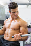 Determined muscular man working on abdominal machine Stock Photos