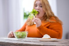 Determined plump woman looking at cookies stock photo