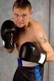 Determined professional boxer in training Stock Photo