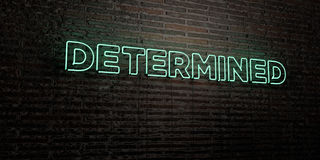 DETERMINED -Realistic Neon Sign on Brick Wall background - 3D rendered royalty free stock image Royalty Free Stock Image