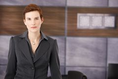 Determined smart businesswoman Royalty Free Stock Photography