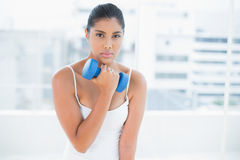 Determined toned brunette holding dumbbells Royalty Free Stock Photography