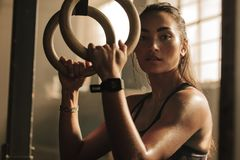 Determined woman exercising with gymnastic rings royalty free stock image
