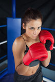 Determined woman in red boxing gloves Royalty Free Stock Photography