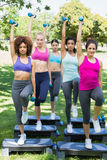 Determined women doing step aerobics in park Stock Photo