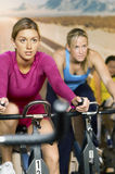 Determined Women Exercising On Bikes In Club Royalty Free Stock Images