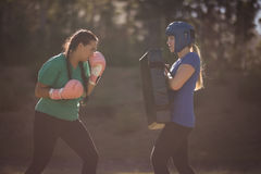 Determined women practicing boxing during obstacle course royalty free stock images