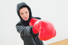 Determined young female boxer in red boxing gloves Royalty Free Stock Photography