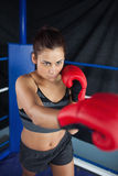 Determined young woman in red boxing gloves Royalty Free Stock Image