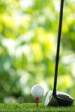 Determini il golf Fotografie Stock Libere da Diritti