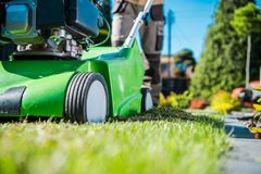 Dethatcher Work Lawn Care. Lawn Care Machinery. Gasoline Dethatcher Pushing By Professional Gardener. Lawn Scarifier Theme Stock Photography