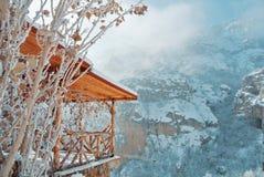 Detiles des hellen hölzernen Gebäudes mit Frostschneeeis und trockenem Le Lizenzfreie Stockfotografie