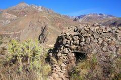 DetIncan runda huset namngav colca nära Chivay i Peru Royaltyfri Foto