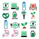 Detox, καθαρισμός σωμάτων με τους χυμούς, τα λαχανικά ή τα εικονίδια διατροφής καθορισμένους διανυσματική απεικόνιση