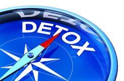 detox illustrazione di stock
