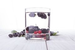 Detox berry water. Mulberry, bilberry, currant royalty free stock images