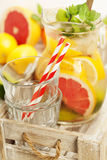 Detox citrus infused flavored water. Stock Images