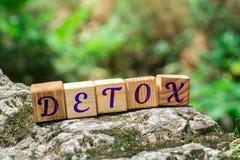Detox de la palabra en piedra imagen de archivo