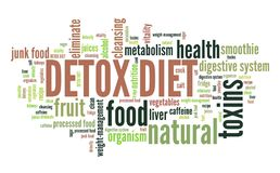 Detox diet. Dietary cleanse. Word cloud sign Royalty Free Stock Photos