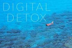 Detox digital del texto en un paisaje del mar Imágenes de archivo libres de regalías