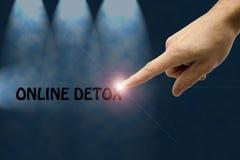 Detox en ligne Image libre de droits