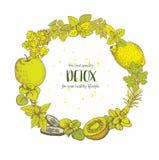 detox Erba, spezie e frutti illustrazione vettoriale