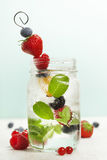 Detox fruit infused flavored water Fresh summer fruits on metal Stock Photos