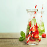 Detox fruit infused flavored water Royalty Free Stock Images