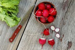 Detox ingredients. Fresh radishes and lettuce leaves against a wooden background. Concept: vegetarian food, healthy food. Royalty Free Stock Photo