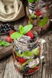 Detox napój z świeżymi jagodami w szklanych słojach Fotografia Royalty Free